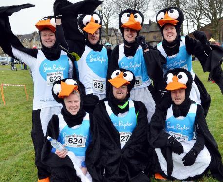 U K  Penguin Fundraiser | Penguin Place Post
