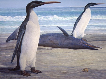 What this 6 1/2 foot tall penguin may have looked like