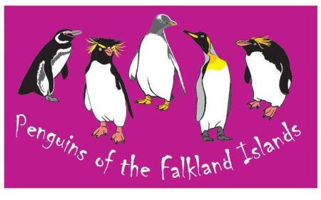 No10PenguinsoftheFalklandIslands