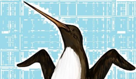 The awe-inspiring Palaeeudyptes klekowskii, at nearly 7 feet tall - believed to be the biggest penguin ever.
