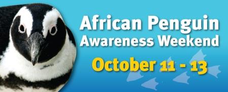 Penguin Awareness_942x380